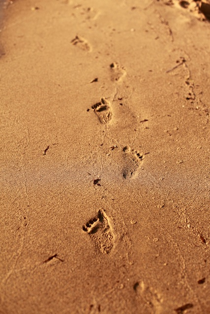 footprintsonthesand