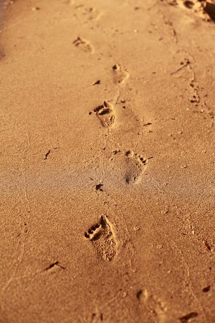 footprintsonthesand